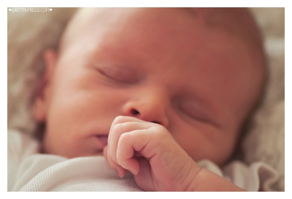 land-o-lakes-lifestyle-newborn-pictures-31515-003