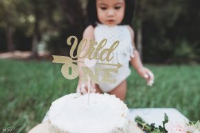 Wesley Chapel One Year Old Cake Smash, Kristine Freed Photography